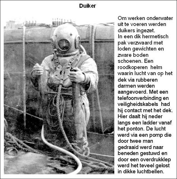 Duiker in de Dender