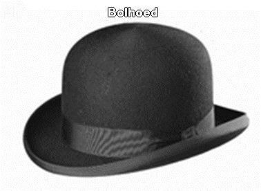 Bolhoed